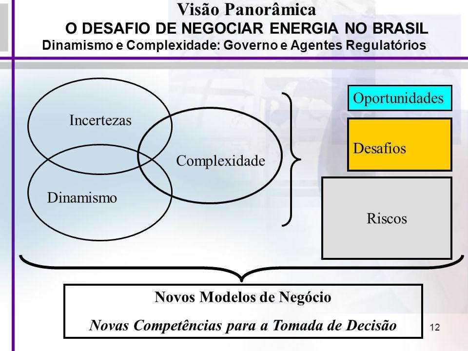 12 Visão Panorâmica O DESAFIO DE NEGOCIAR ENERGIA NO BRASIL Dinamismo e Complexidade: Governo e Agentes Regulatórios Riscos Desafios Oportunidades Nov