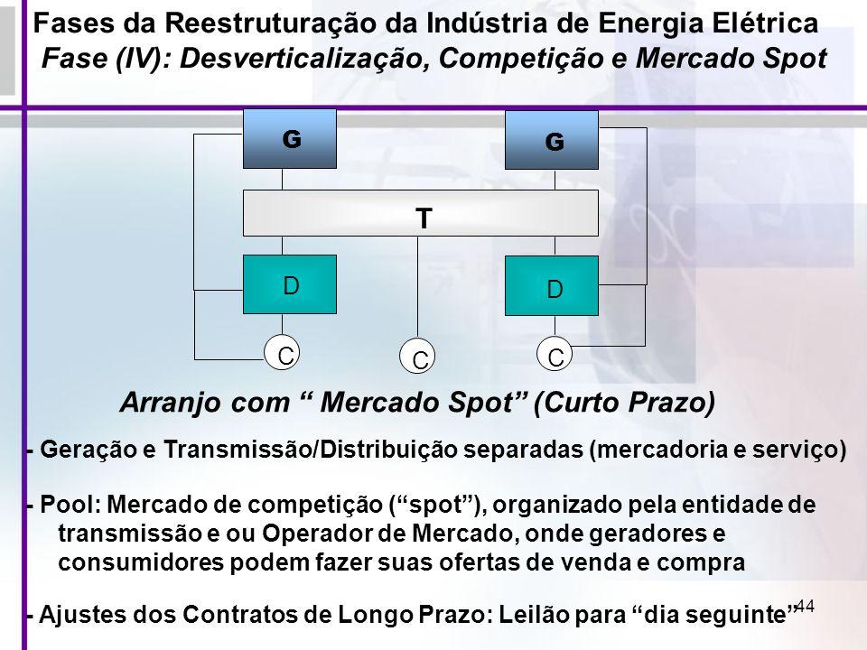 44 - Geração e Transmissão/Distribuição separadas (mercadoria e serviço) - Pool: Mercado de competição (spot), organizado pela entidade de transmissão