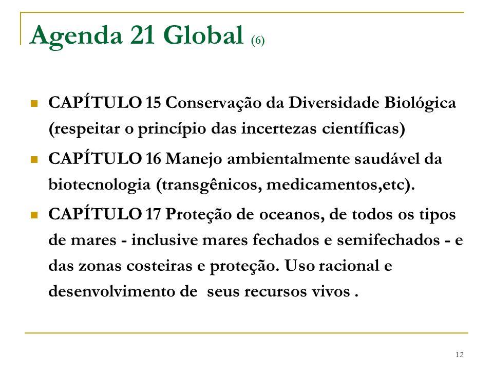 12 Agenda 21 Global (6) CAPÍTULO 15 Conservação da Diversidade Biológica (respeitar o princípio das incertezas científicas) CAPÍTULO 16 Manejo ambient