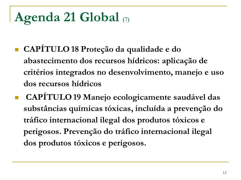 13 Agenda 21 Global (7) CAPÍTULO 18 Proteção da qualidade e do abastecimento dos recursos hídricos: aplicação de critérios integrados no desenvolvimen