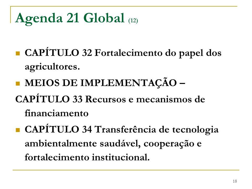 18 Agenda 21 Global (12) CAPÍTULO 32 Fortalecimento do papel dos agricultores. MEIOS DE IMPLEMENTAÇÃO – CAPÍTULO 33 Recursos e mecanismos de financiam