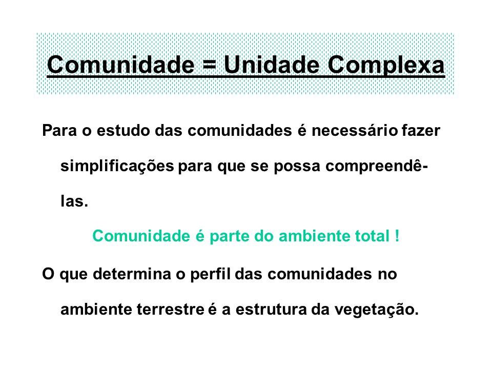Comunidade = Unidade Complexa Para o estudo das comunidades é necessário fazer simplificações para que se possa compreendê- las. Comunidade é parte do