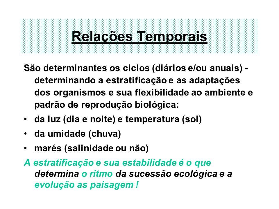 Relações Temporais São determinantes os ciclos (diários e/ou anuais) - determinando a estratificação e as adaptações dos organismos e sua flexibilidad