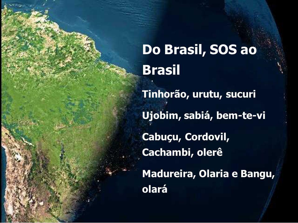 Cascadura, Água Santa, Acari Ipanema, Nova Iguaçu Do Brasil, SOS ao Brasil Anos 1970 - Elis Regina