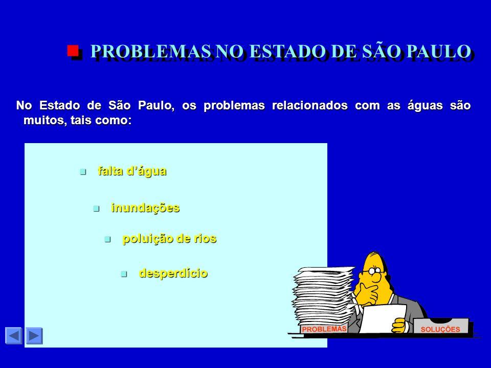 No Estado de São Paulo, os problemas relacionados com as águas são muitos, tais como: No Estado de São Paulo, os problemas relacionados com as águas são muitos, tais como: PROBLEMAS NO ESTADO DE SÃO PAULO n poluição de rios n inundações n falta dágua n desperdício