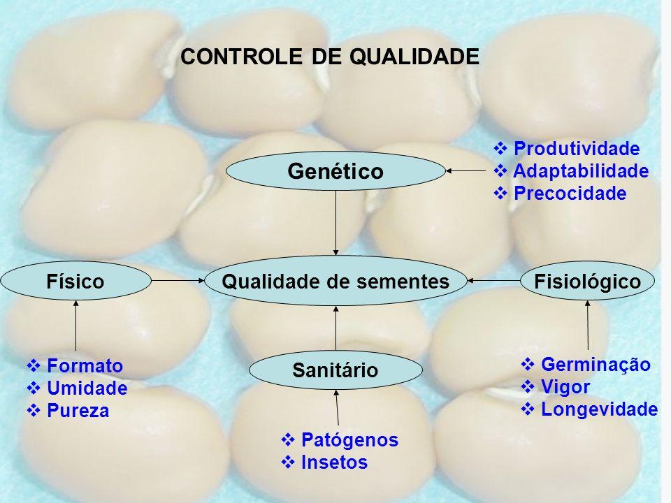 CONTROLE DE QUALIDADE Qualidade de sementes Genético FisiológicoFísico Sanitário Produtividade Adaptabilidade Precocidade Germinação Vigor Longevidade