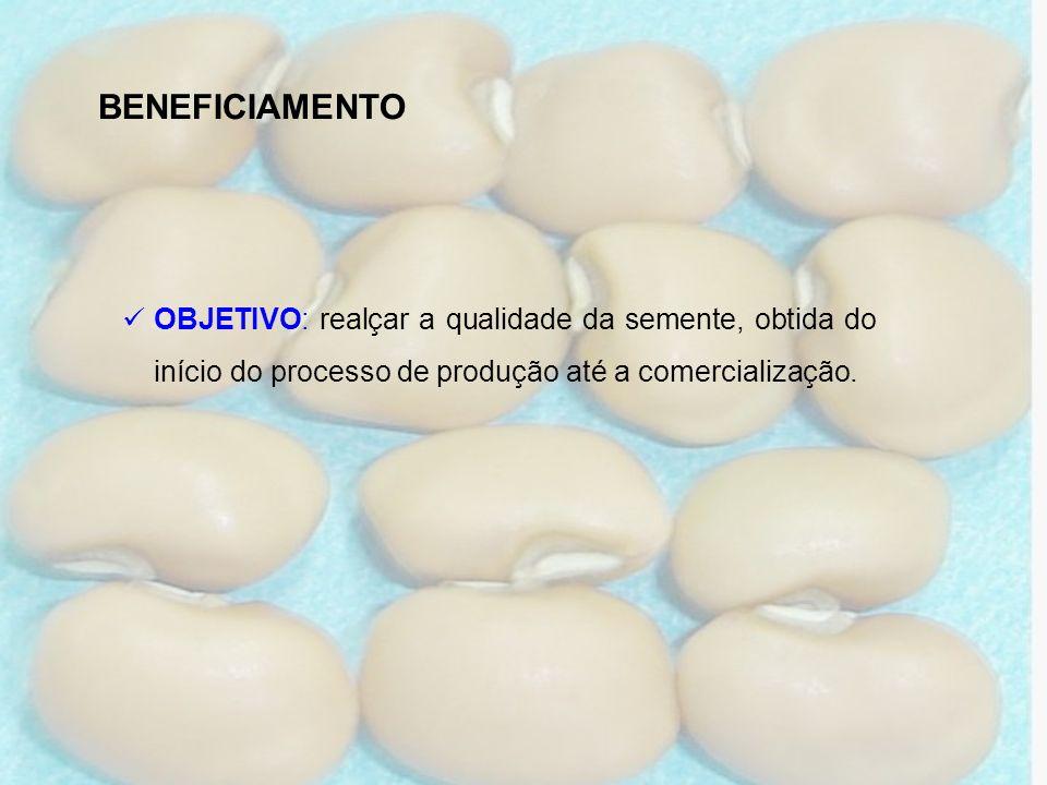 BENEFICIAMENTO OBJETIVO: realçar a qualidade da semente, obtida do início do processo de produção até a comercialização.