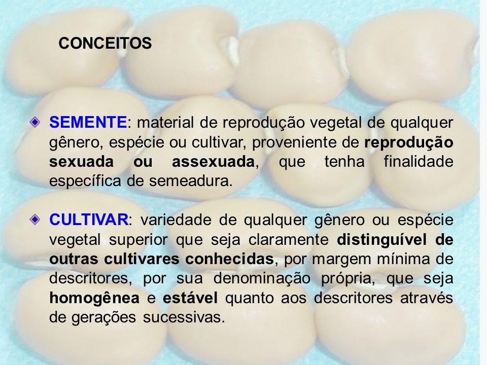 CONCEITOS SEMENTE: material de reprodução vegetal de qualquer gênero, espécie ou cultivar, proveniente de reprodução sexuada ou assexuada, que tenha f
