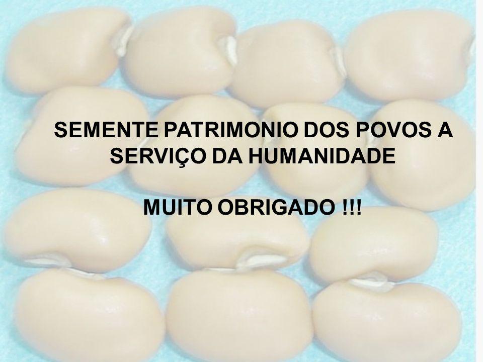 SEMENTE PATRIMONIO DOS POVOS A SERVIÇO DA HUMANIDADE MUITO OBRIGADO !!!