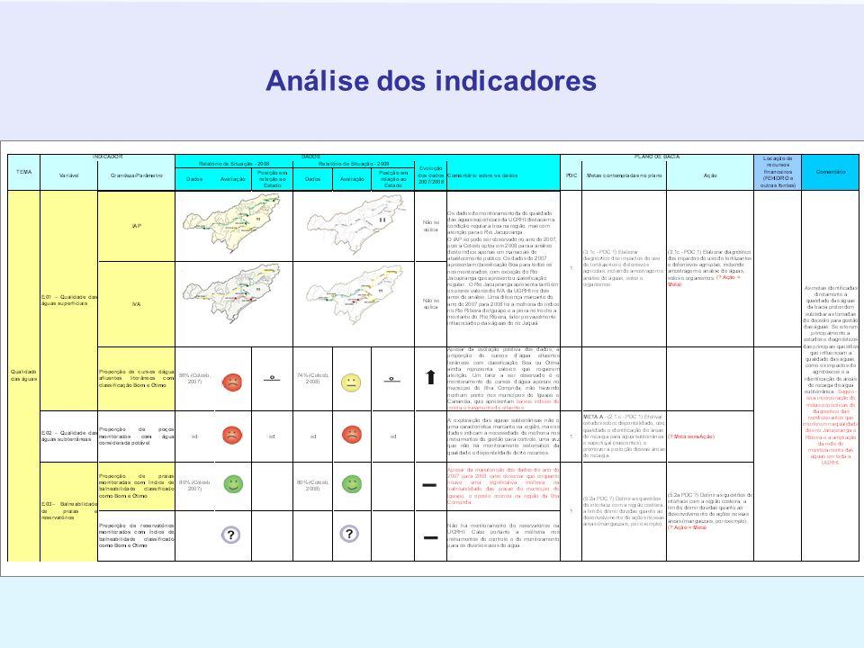 Análise dos indicadores