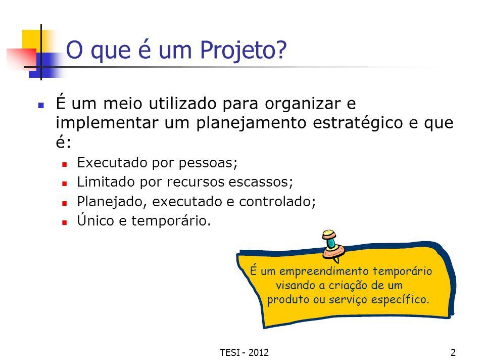 TESI - 20122 O que é um Projeto? É um meio utilizado para organizar e implementar um planejamento estratégico e que é: Executado por pessoas; Limitado