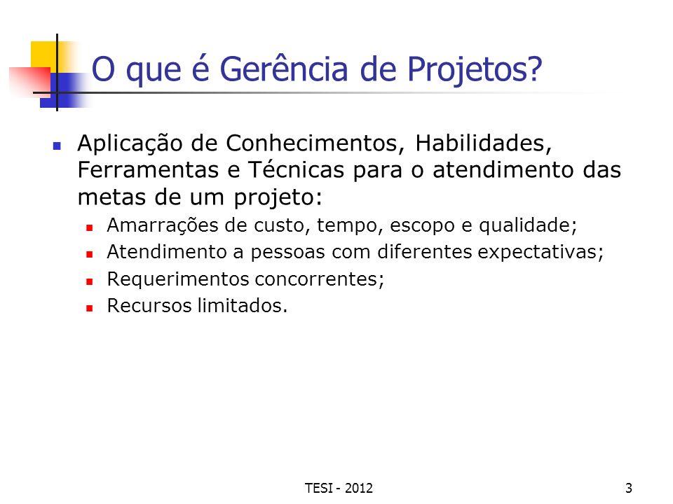 TESI - 20123 O que é Gerência de Projetos? Aplicação de Conhecimentos, Habilidades, Ferramentas e Técnicas para o atendimento das metas de um projeto: