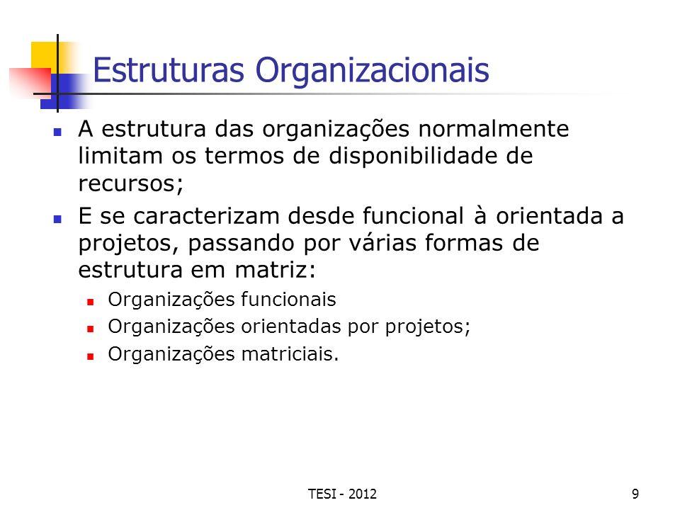 TESI - 20129 Estruturas Organizacionais A estrutura das organizações normalmente limitam os termos de disponibilidade de recursos; E se caracterizam d