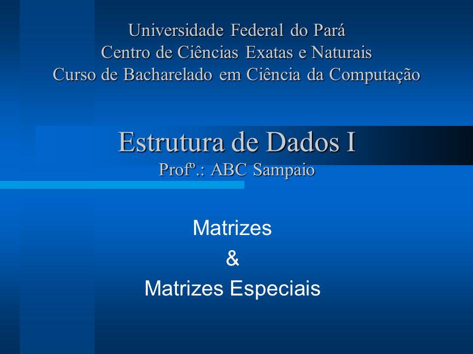 Estrutura de Dados I Profº.: ABC Sampaio Matrizes & Matrizes Especiais Universidade Federal do Pará Centro de Ciências Exatas e Naturais Curso de Bach