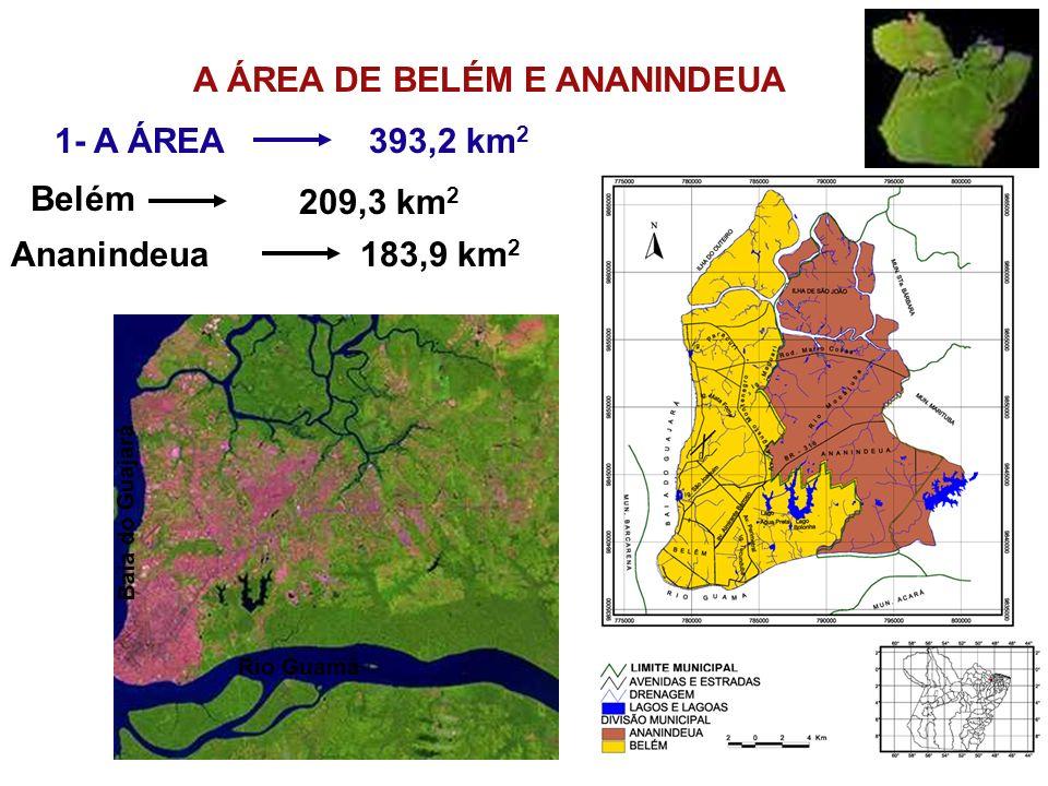 A ÁREA DE BELÉM E ANANINDEUA 1- A ÁREA Rio Guamá Baia do Guajará Belém Ananindeua183,9 km 2 393,2 km 2 209,3 km 2