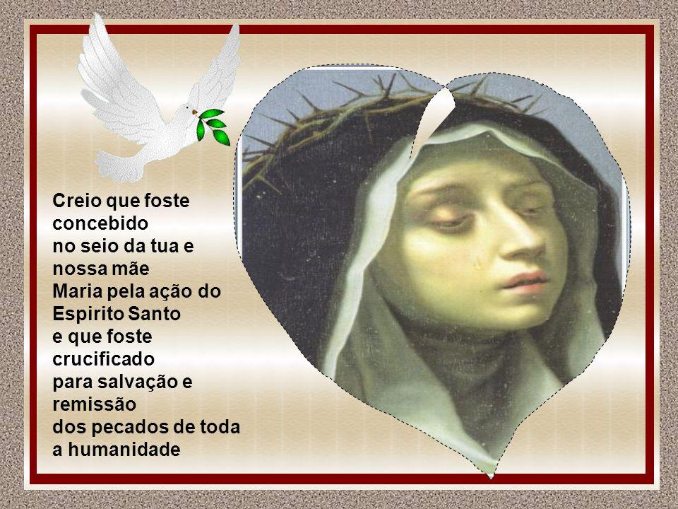 Creio que foste concebido no seio da tua e nossa mãe Maria pela ação do Espirito Santo e que foste crucificado para salvação e remissão dos pecados de toda a humanidade