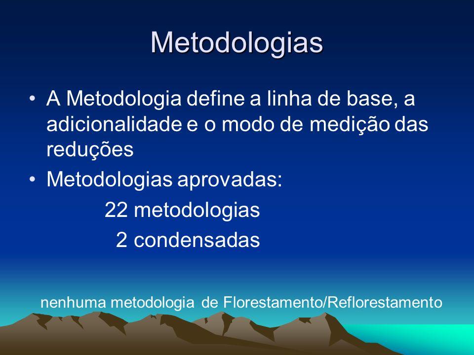 Metodologias A Metodologia define a linha de base, a adicionalidade e o modo de medição das reduções Metodologias aprovadas: 22 metodologias 2 condensadas nenhuma metodologia de Florestamento/Reflorestamento