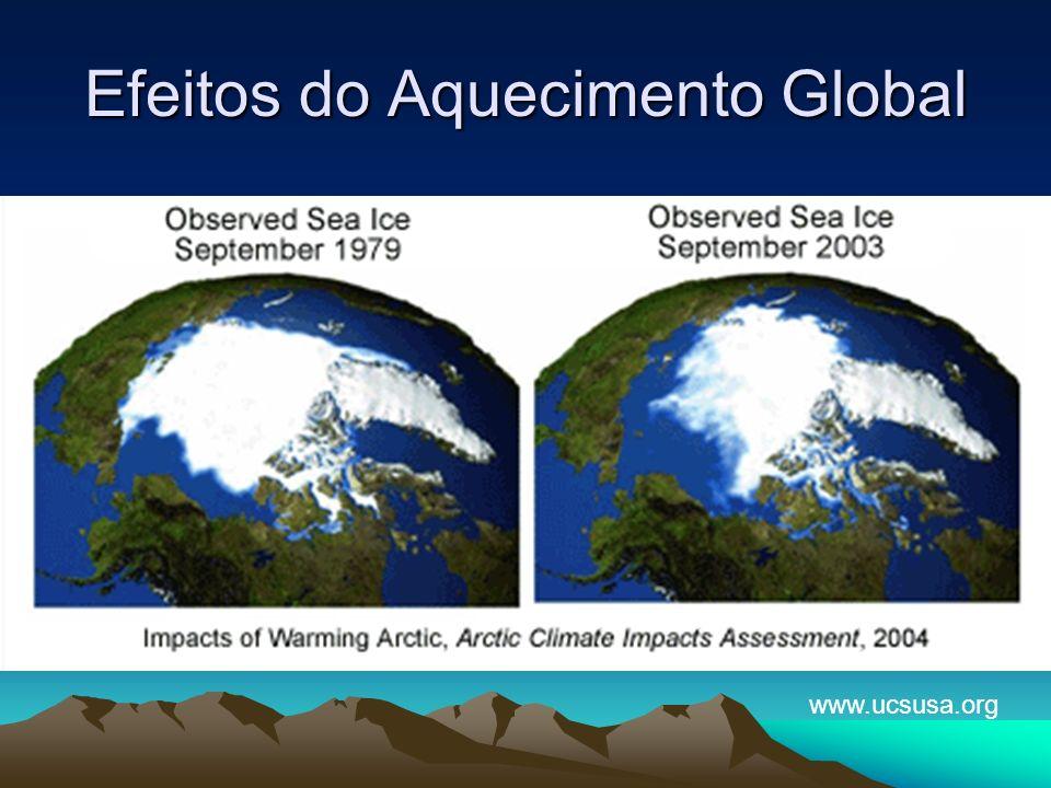 Efeitos do Aquecimento Global www.ucsusa.org