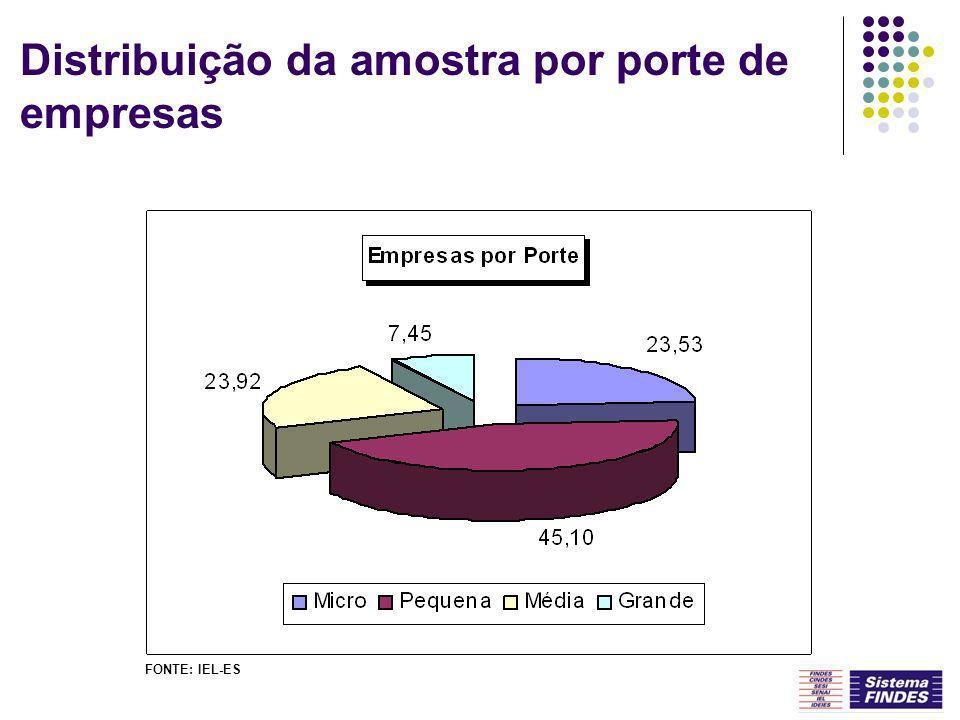 Distribuição da amostra por porte de empresas FONTE: IEL-ES