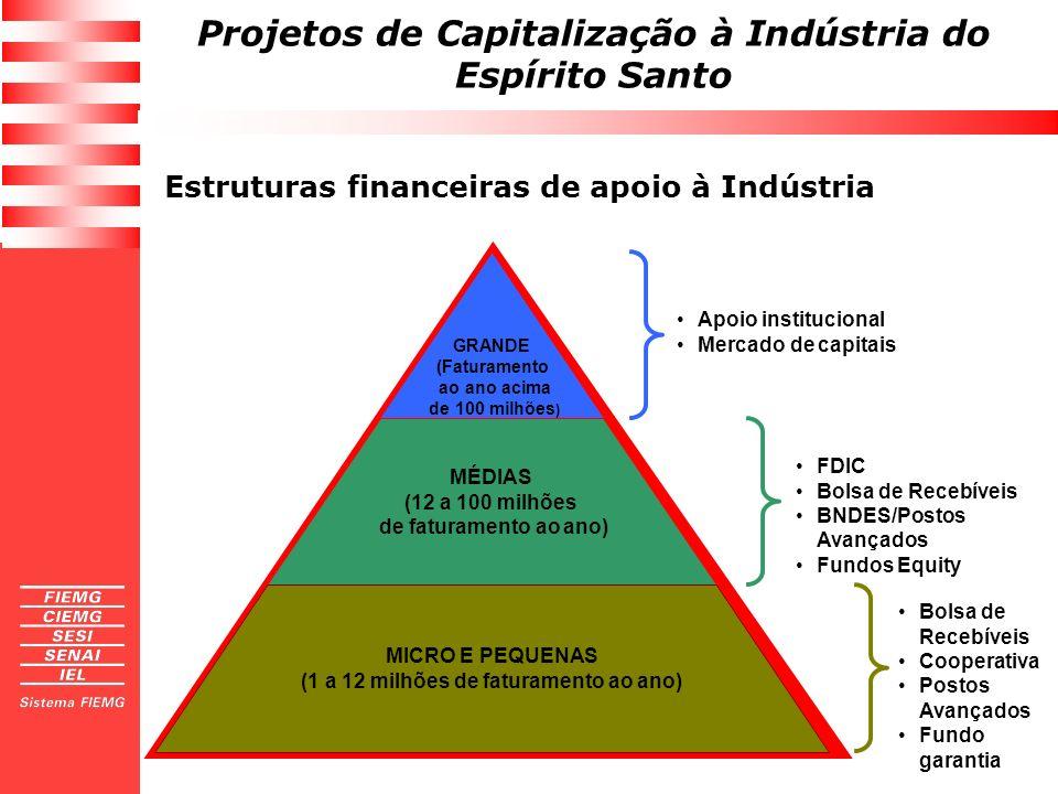 Projetos de Capitalização à Indústria do Espírito Santo GRANDE (Faturamento ao ano acima de 100 milhões ) MÉDIAS (12 a 100 milhões de faturamento ao a