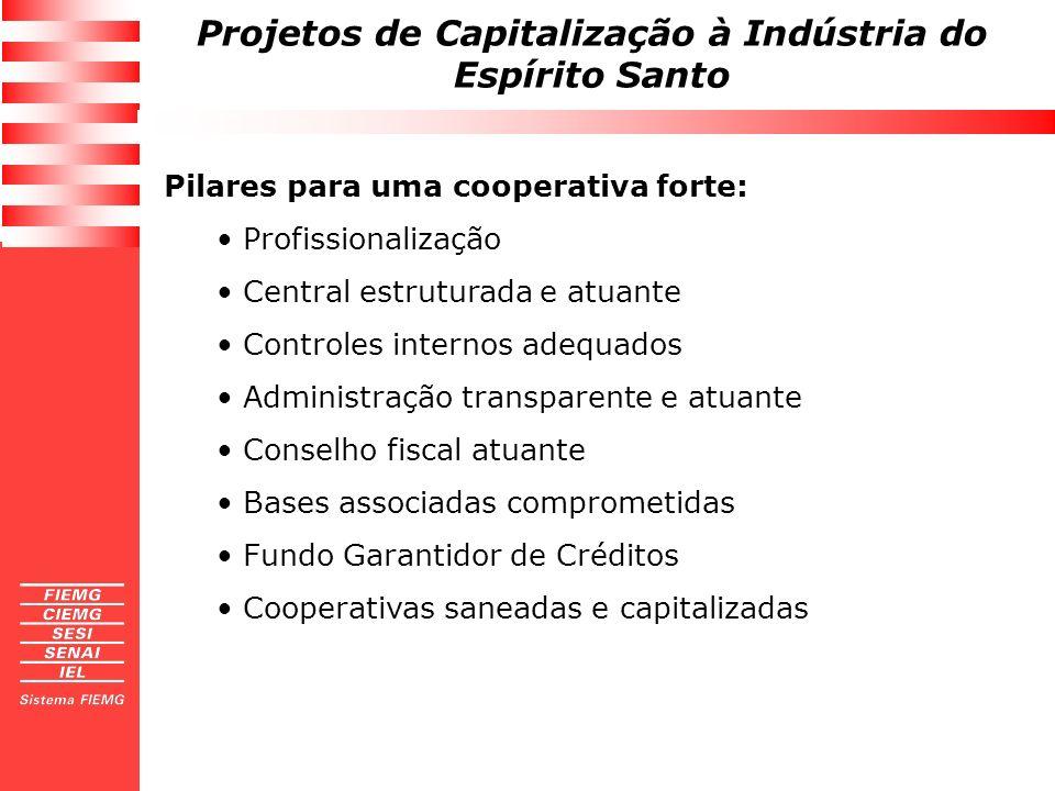 Projetos de Capitalização à Indústria do Espírito Santo Pilares para uma cooperativa forte: Profissionalização Central estruturada e atuante Controles