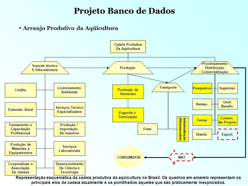 Projeto Banco de Dados Objetivo Geral: Produzir 5 projetos prioritários para o arranjo ate 2005 Estratégia: Contratar empresa especializada para produzir diagnostico, bem com basear-se nos diagnósticos produzidos pela PROMAR, IDAF e SEBRAE.