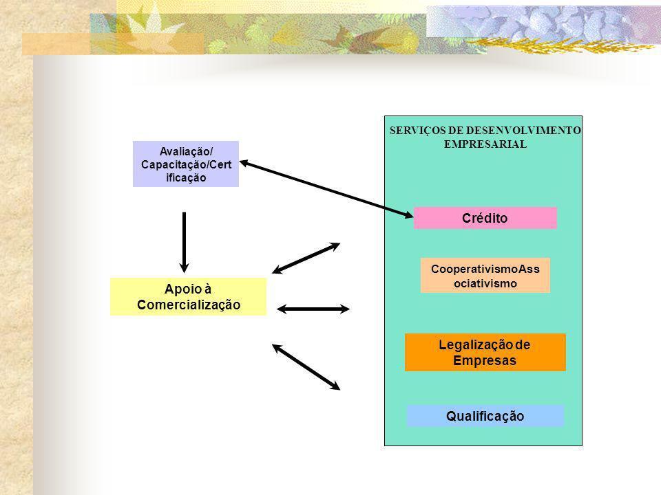 Metodologia O objetivo principal é comercializar os serviços de trabalhadores autônomos, conta-própria.