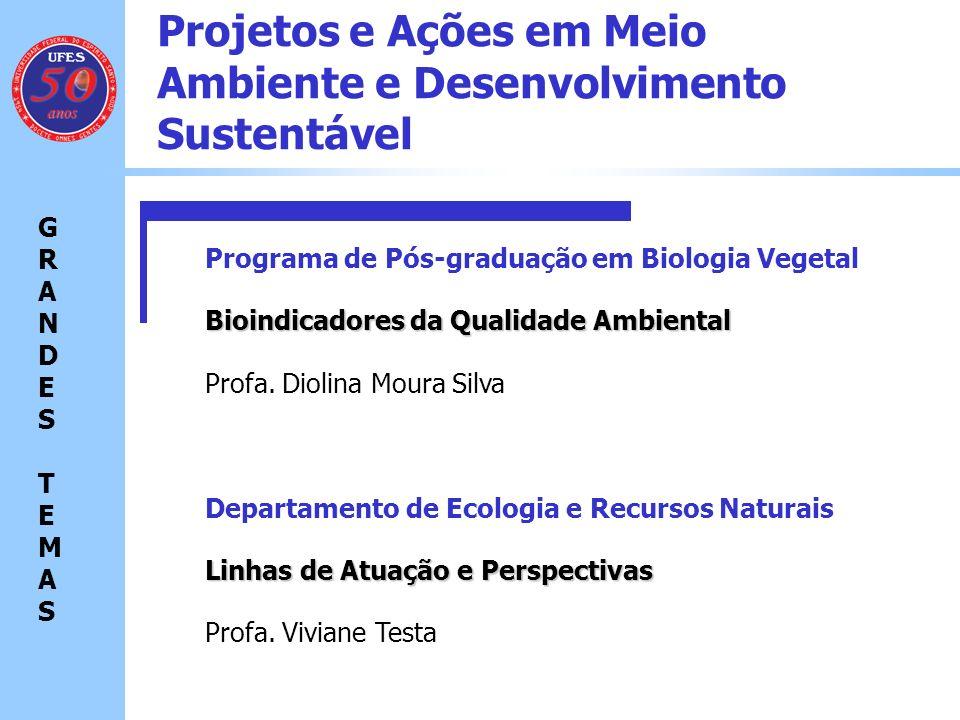 Projetos e Ações em Meio Ambiente e Desenvolvimento Sustentável Economia Ambiental GRANDES TEMASGRANDES TEMAS Meio Ambiente e Desenvolvimento Sustentável Recursos Naturais Saúde Ambiental Tecnologias Ambientais.