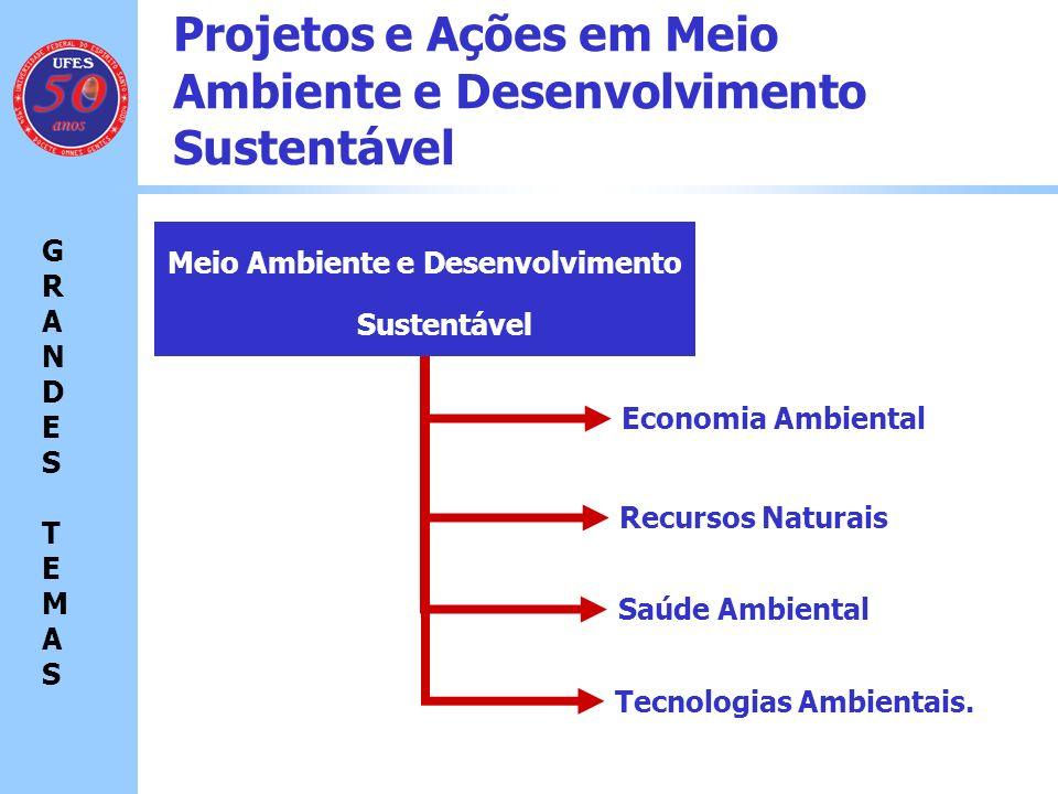 Projetos e Ações em Meio Ambiente e Desenvolvimento Sustentável Economia Ambiental GRANDES TEMASGRANDES TEMAS Meio Ambiente e Desenvolvimento Sustentável Recursos Naturais Saúde Ambiental Tecnologias Ambientais Programa de Pós-Graduação em Engenharia Ambiental Área de Concentração: Poluição do Ar Prof.