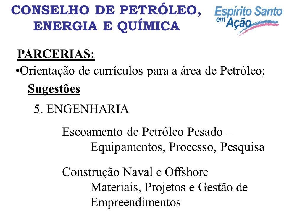 CONSELHO DE PETRÓLEO, ENERGIA E QUÍMICA PARCERIAS: Orientação de currículos para a área de Petróleo; Sugestões 5. ENGENHARIA Escoamento de Petróleo Pe