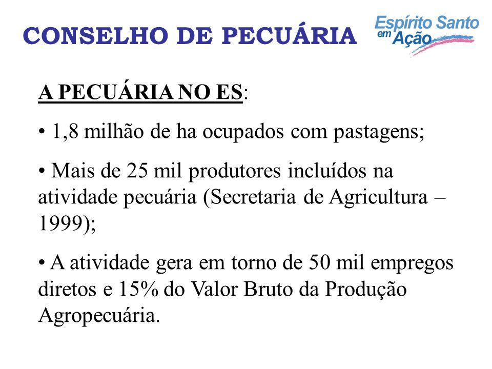 CONSELHO DE PECUÁRIA A PECUÁRIA NO ES: 1,8 milhão de ha ocupados com pastagens; Mais de 25 mil produtores incluídos na atividade pecuária (Secretaria de Agricultura – 1999); A atividade gera em torno de 50 mil empregos diretos e 15% do Valor Bruto da Produção Agropecuária.