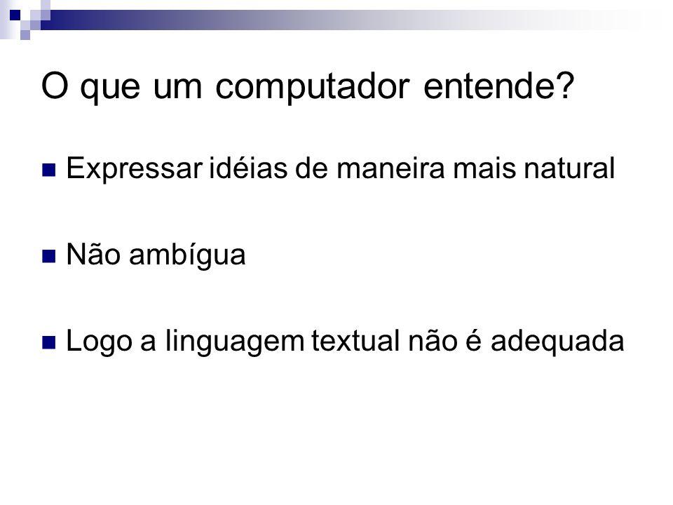 O que um computador entende? Expressar idéias de maneira mais natural Não ambígua Logo a linguagem textual não é adequada