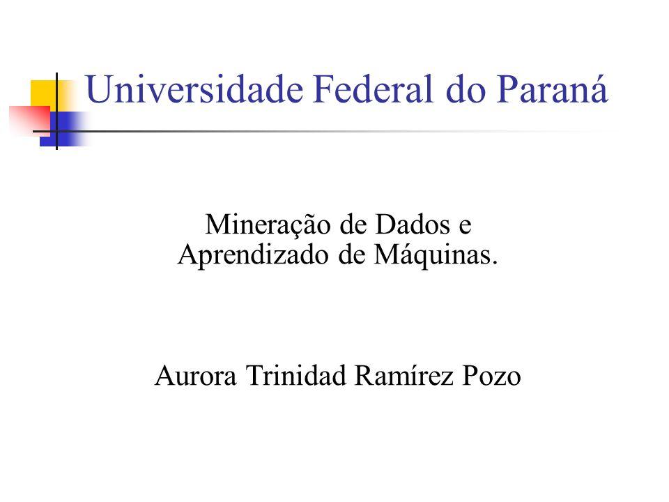 Universidade Federal do Paraná Mineração de Dados e Aprendizado de Máquinas. Aurora Trinidad Ramírez Pozo