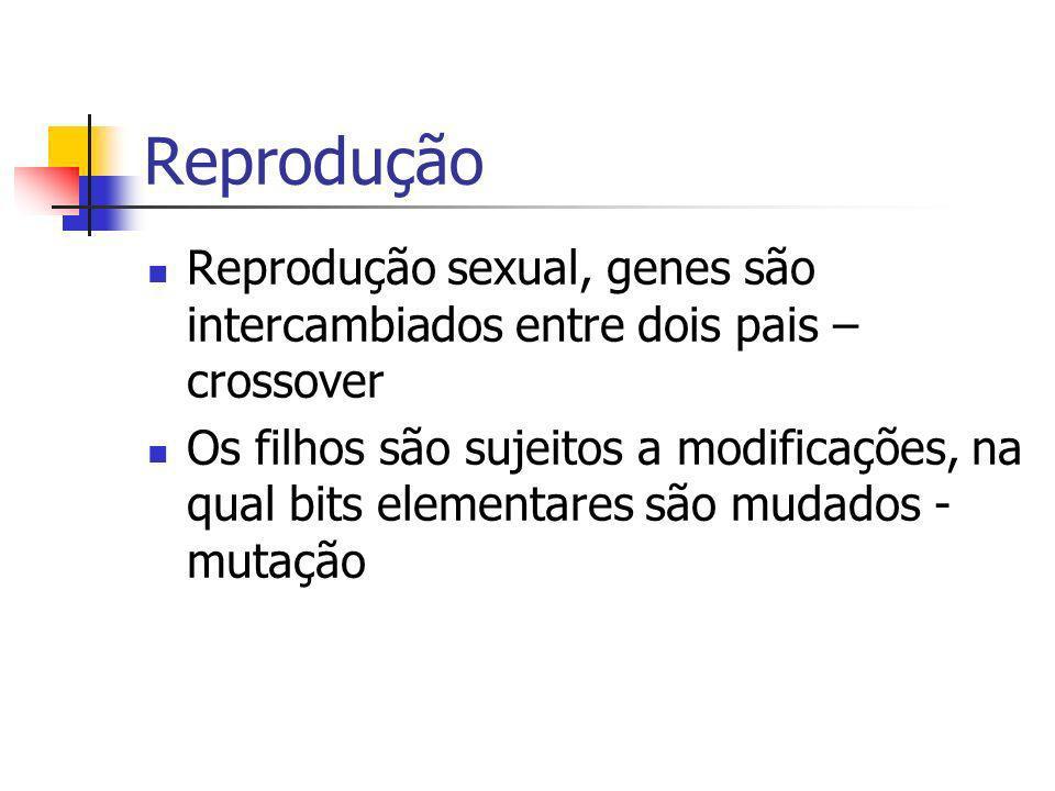 Reprodução Reprodução sexual, genes são intercambiados entre dois pais – crossover Os filhos são sujeitos a modificações, na qual bits elementares são mudados - mutação