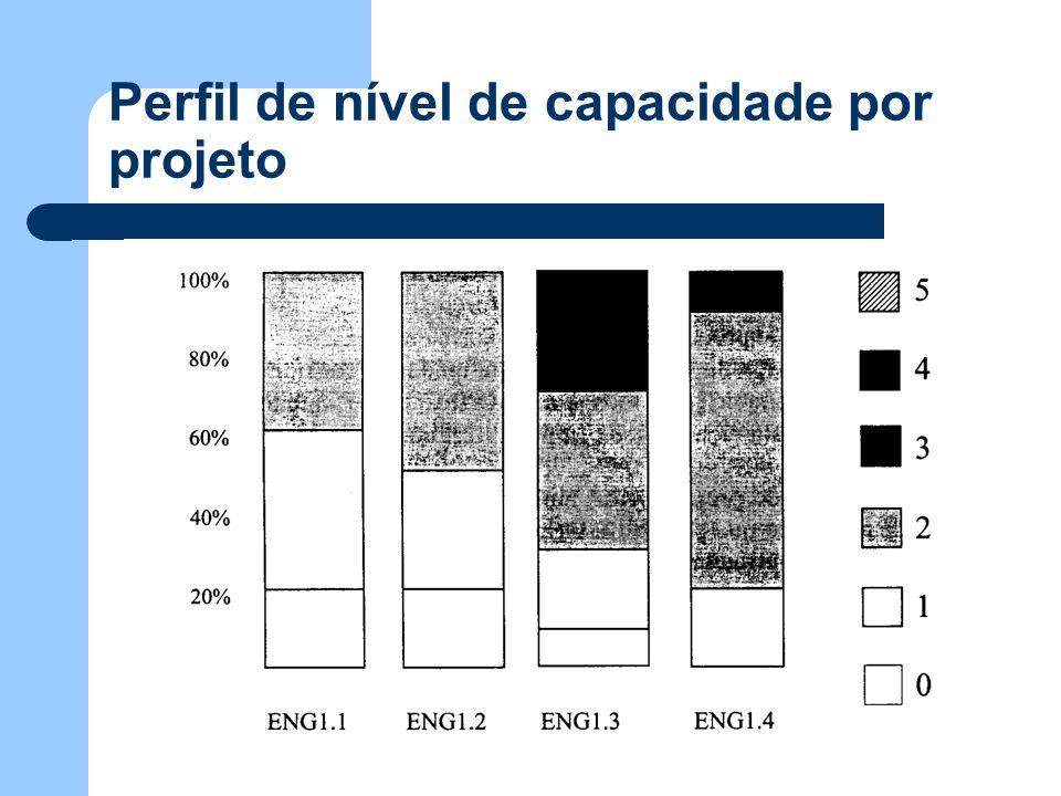 Perfil de nível de capacidade por projeto