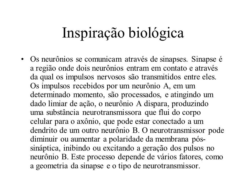 Inspiração biológica Os neurônios se comunicam através de sinapses. Sinapse é a região onde dois neurônios entram em contato e através da qual os impu
