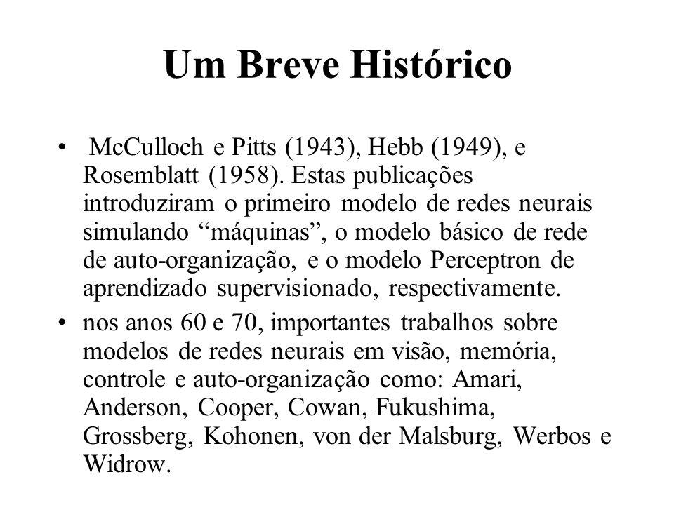 Um Breve Histórico McCulloch e Pitts (1943), Hebb (1949), e Rosemblatt (1958). Estas publicações introduziram o primeiro modelo de redes neurais simul