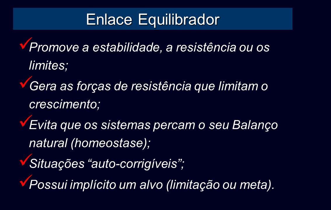 Enlace Equilibrador Promove a estabilidade, a resistência ou os limites; Gera as forças de resistência que limitam o crescimento; Evita que os sistema