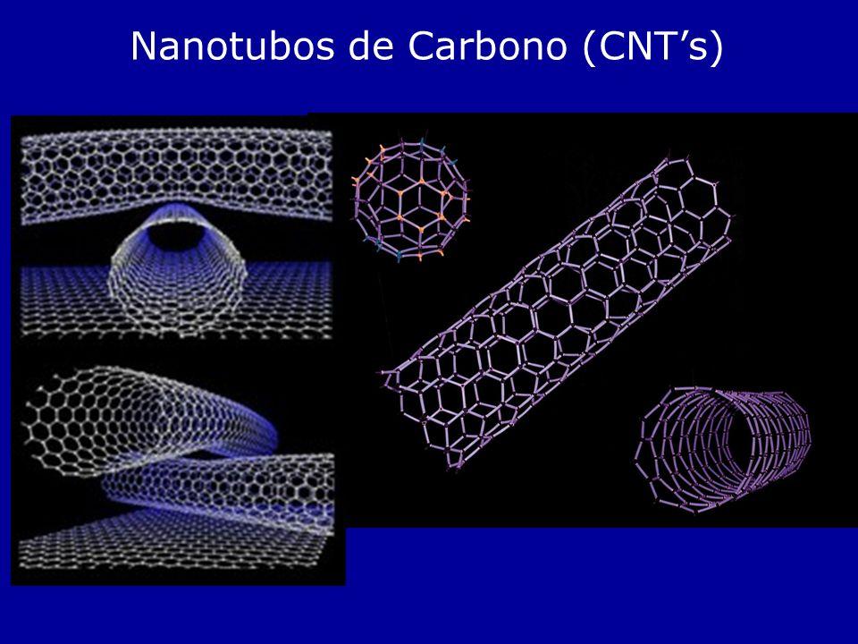 Nanotubos de Carbono (CNTs)