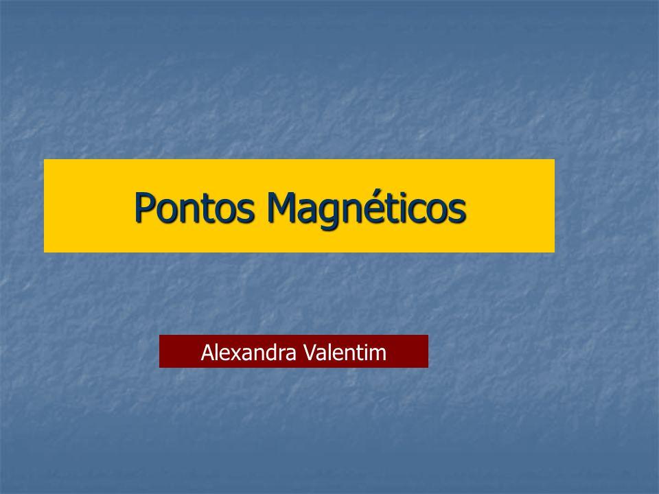Pontos Magnéticos Alexandra Valentim