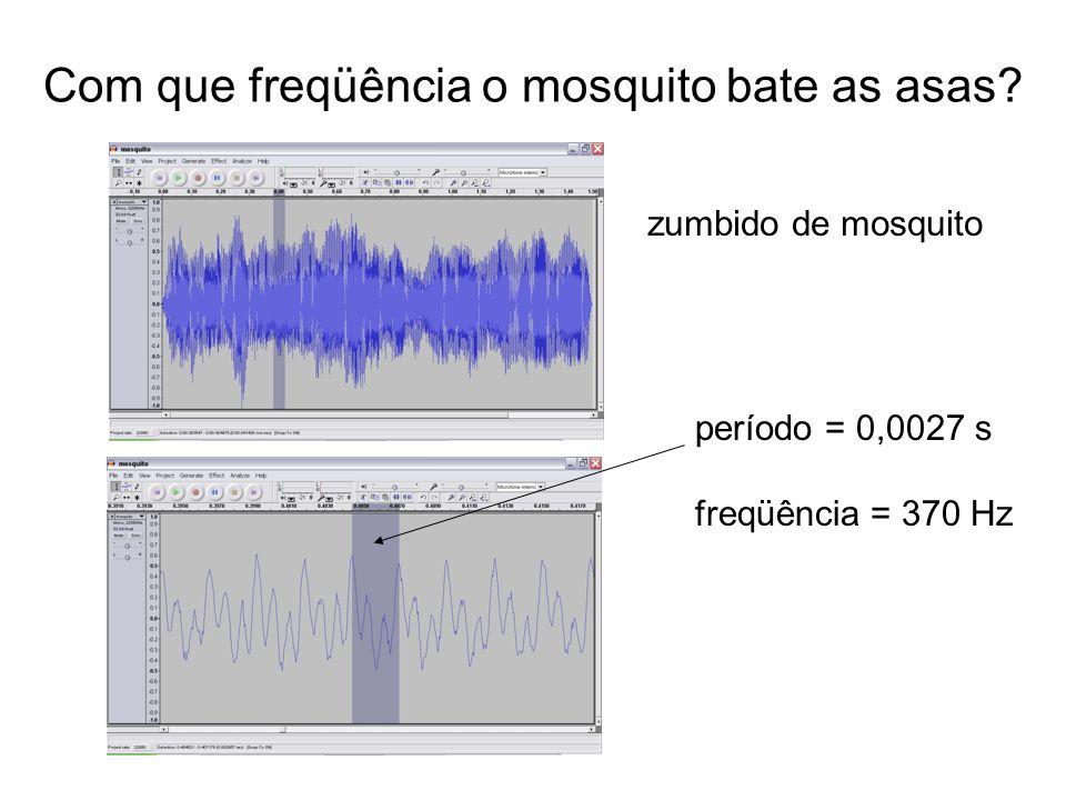Com que freqüência o mosquito bate as asas? zumbido de mosquito período = 0,0027 s freqüência = 370 Hz