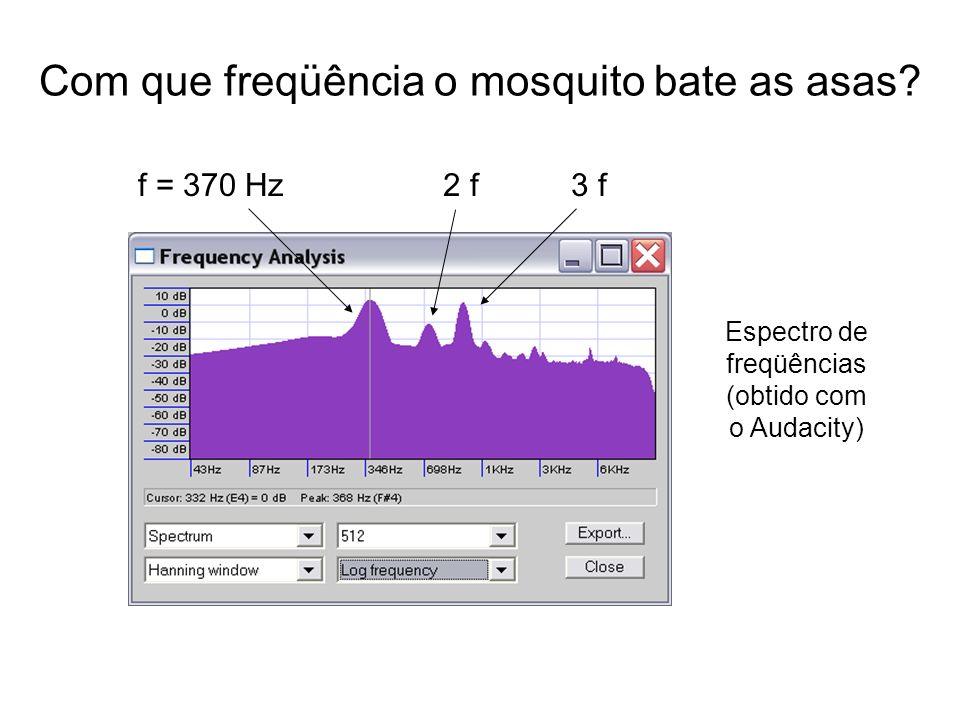 Com que freqüência o mosquito bate as asas? f = 370 Hz2 f3 f Espectro de freqüências (obtido com o Audacity)