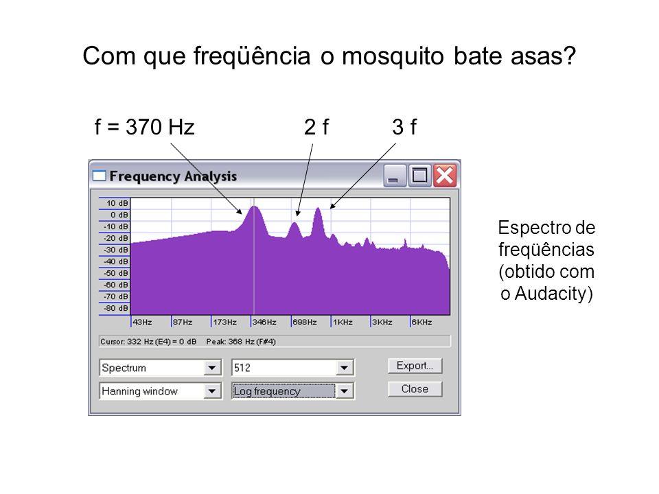 Com que freqüência o mosquito bate asas? f = 370 Hz2 f3 f Espectro de freqüências (obtido com o Audacity)