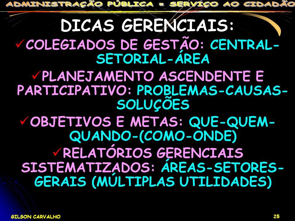 GILSON CARVALHO 25 DICAS GERENCIAIS: COLEGIADOS DE GESTÃO: CENTRAL- SETORIAL-ÁREA PLANEJAMENTO ASCENDENTE E PARTICIPATIVO: PROBLEMAS-CAUSAS- SOLUÇÕES