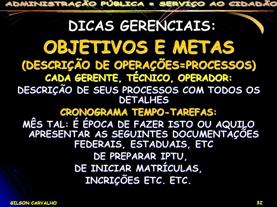 GILSON CARVALHO 32 DICAS GERENCIAIS: OBJETIVOS E METAS (DESCRIÇÃO DE OPERAÇÕES=PROCESSOS) CADA GERENTE, TÉCNICO, OPERADOR: DESCRIÇÃO DE SEUS PROCESSOS