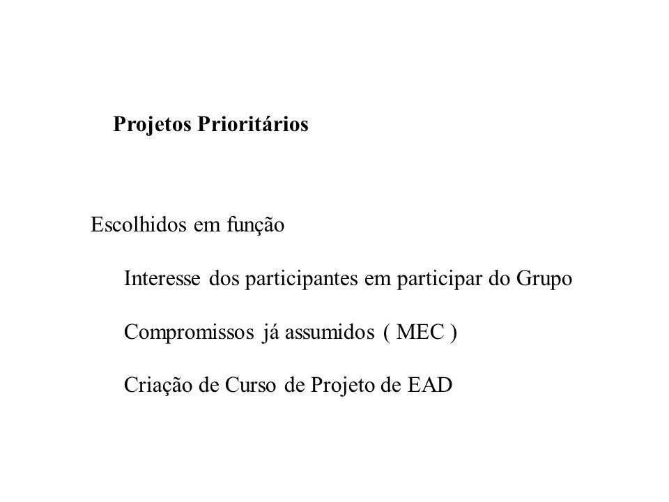 Projetos Prioritários Escolhidos em função Interesse dos participantes em participar do Grupo Compromissos já assumidos ( MEC ) Criação de Curso de Projeto de EAD