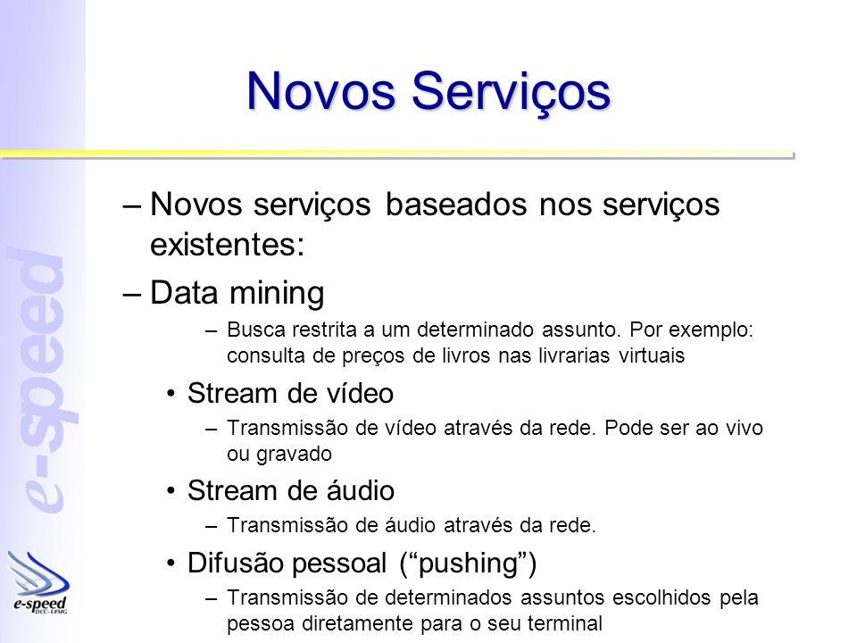 Novos Serviços –Novos serviços baseados nos serviços existentes: –Data mining –Busca restrita a um determinado assunto. Por exemplo: consulta de preço