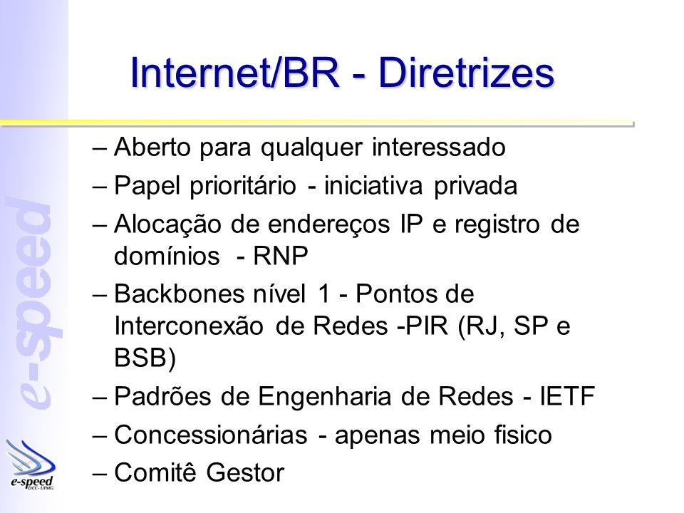 Internet/BR - Diretrizes –Aberto para qualquer interessado –Papel prioritário - iniciativa privada –Alocação de endereços IP e registro de domínios -