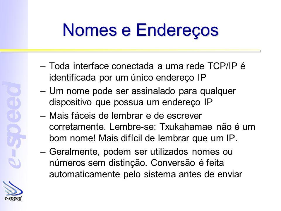 Nomes e Endereços –Toda interface conectada a uma rede TCP/IP é identificada por um único endereço IP –Um nome pode ser assinalado para qualquer dispo