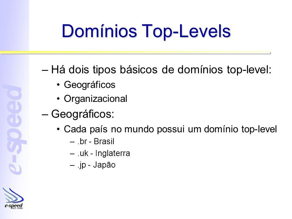 Domínios Top-Levels –Há dois tipos básicos de domínios top-level: Geográficos Organizacional –Geográficos: Cada país no mundo possui um domínio top-le